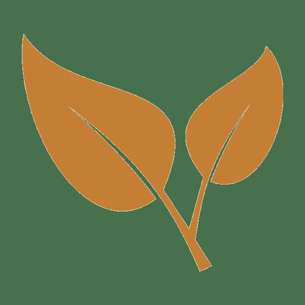 engagement bio et ecologique cassonade bordeaux